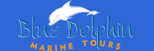Blue Dolphin Tours